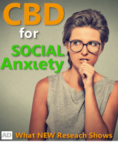see what research shows for cbd and social anxiety